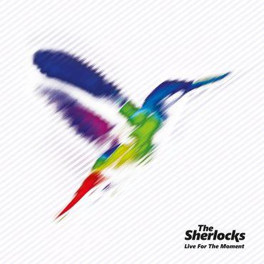 The sherlocks   indies lp
