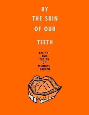 By the skin of our teeth book