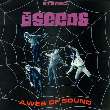 The seeds a web of sound 4903502