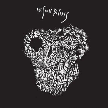 The skull defekts cover