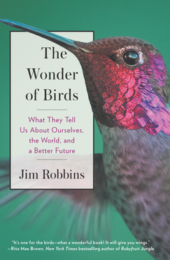 Jim robbins the wonder of birds