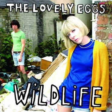 The lovely eggs %e2%80%93 wildlife
