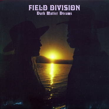 Field division dark matter dreams