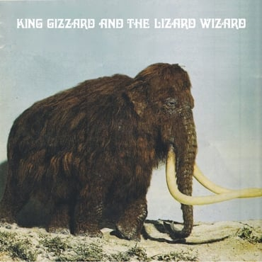 King gizzard and the polygondwanaland fuzz club