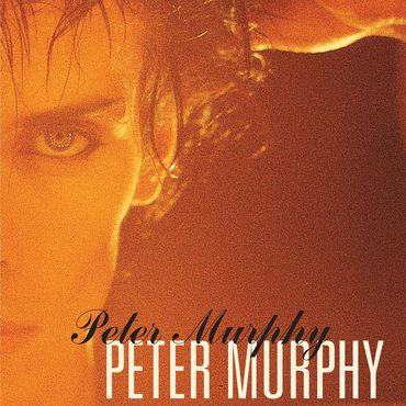 Peter murphy 5 albums
