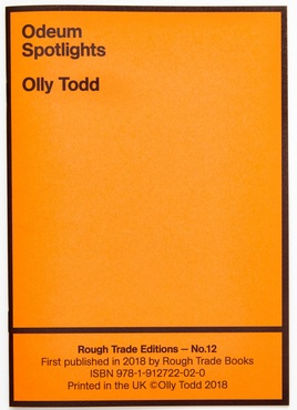 12   todd   rough trade books pamphlet 102