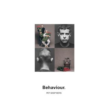 Pet shop boys behaviour