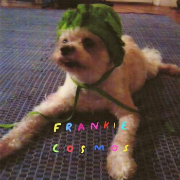 Frankie cosmos zentropy