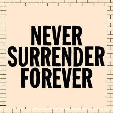 f3439cb2d9 Juiceboxxx - Never Surrender Forever - Tape