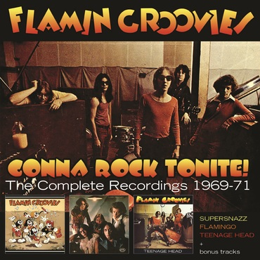 Flamin groovies box cover