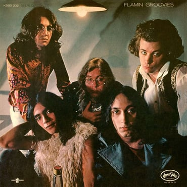 Flamingroovies flamingo  37833.1407170847.500.750