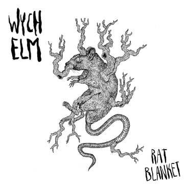 Wych elm front