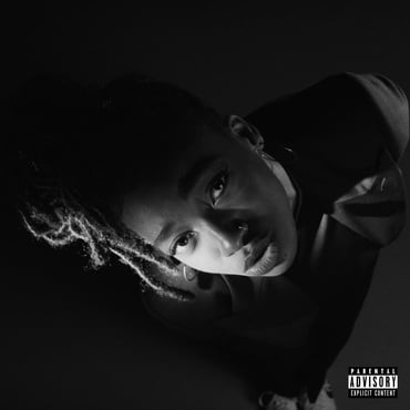 Little simz high res cover