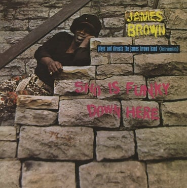 James brown sho is funky down here lp