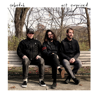 Sebadoh   act surprised cover