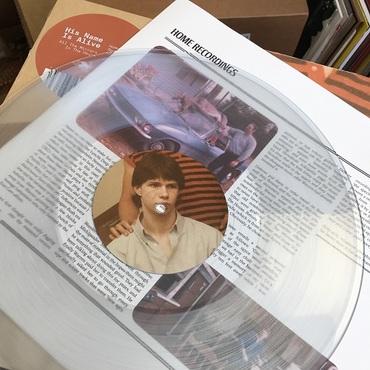 Vinyl snapshot web
