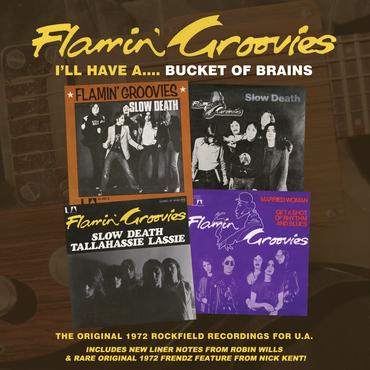Flamin' groovies   bucket of brains hi res