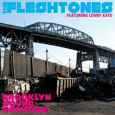 Brooklyn sound solution the fleshtones