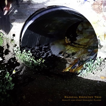 Radical empathy trio feat. thollem mcdonas  nels cline  michael wimberly   reality and other hallucinations   esp5035lp