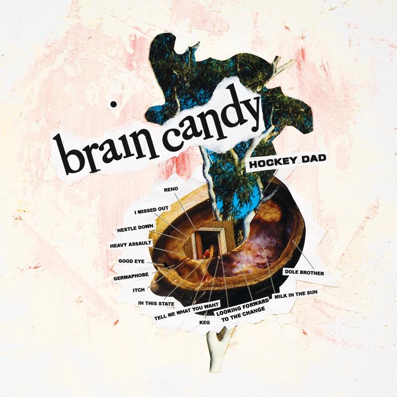 Hockey Dad Brain Candy Lp Rough Trade