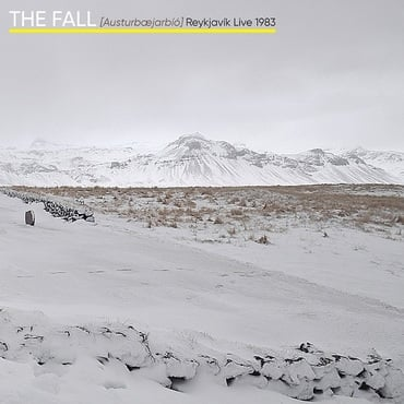 The fall   reykjavi%cc%81k live 1983