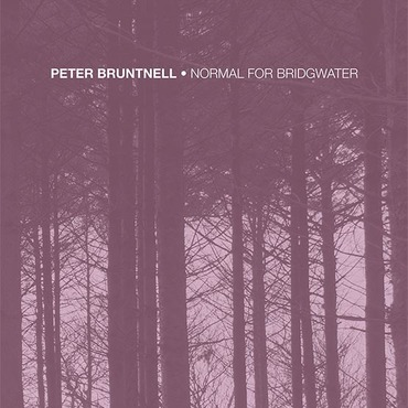 Peter bruntnell   normal for bridgwater